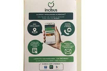 incibus app free android ios