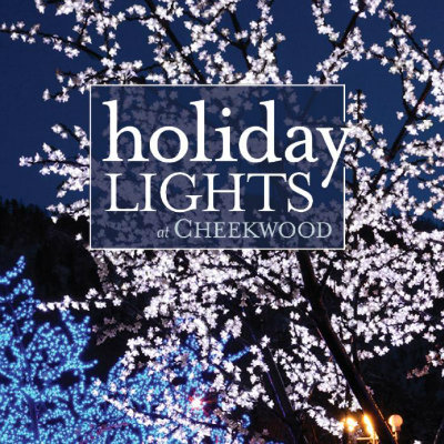 primary-Holiday-Lights-1467307570