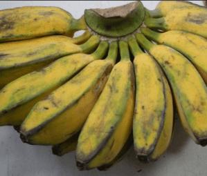 pisang kepk kulitnya ga bagus