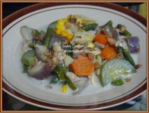 Lodeh Campur (Semua Sayur Yang Tersedia Di Kulkas) :D