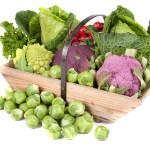 En general totes les verdures de la familia Brassica (bledes, cols, brècol, colinaps...) són excel·lents fonts
