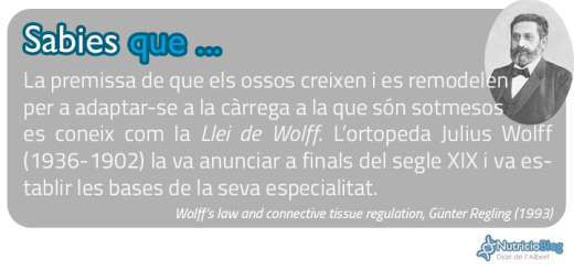 SabiesQue---LleiWolffi