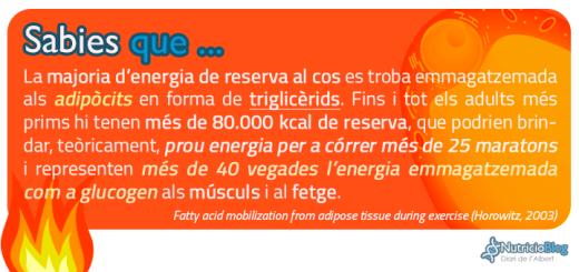 SabiesQue-EnergiaTriglicerids