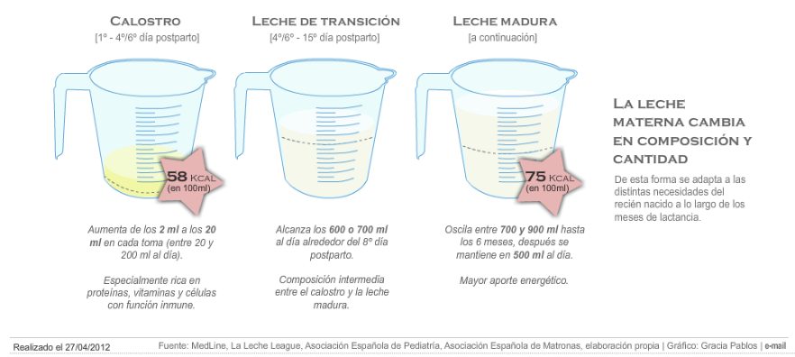 Lactancia Materna - Tipos de leche