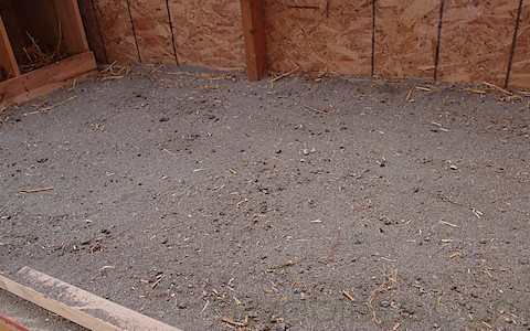 Chicken Coop Update: Sand Bed-Deep Litter Hybrid System
