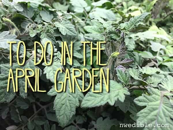 To Do April Garden