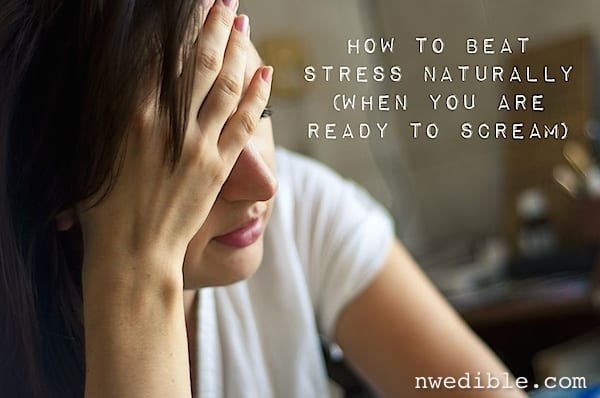 How To Beat Stress Naturally (When You're Ready To Scream!)