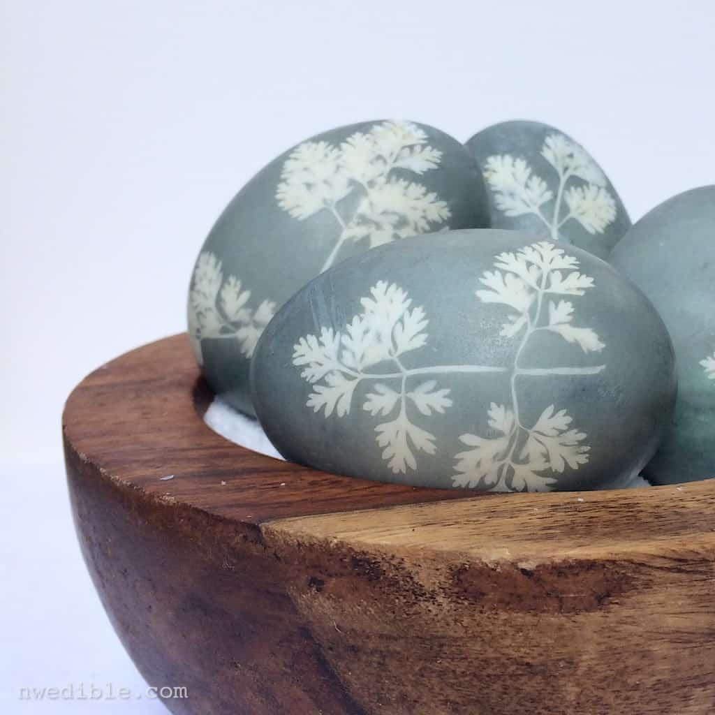 Sunprint-Dyed-Eggs82