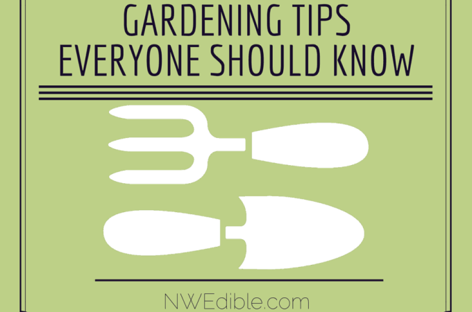 Turn Your Old Wire Hangers Into Garden Staples!
