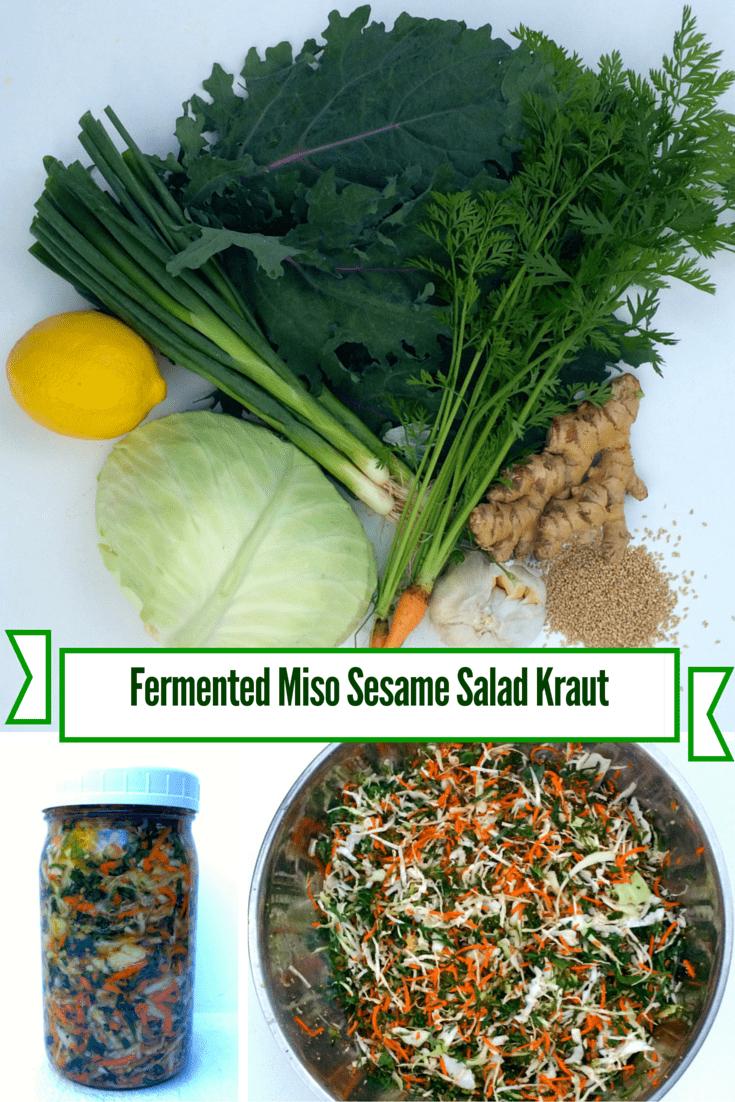 Fermented Miso Sesame Salad Kraut