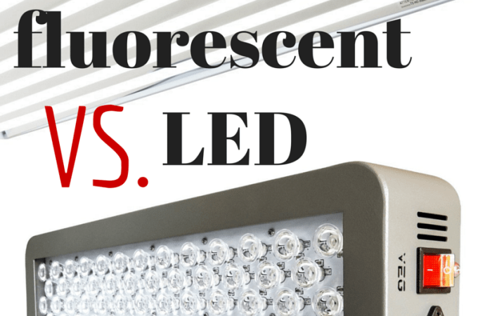 Are LED Grow Lights Worth The Money?