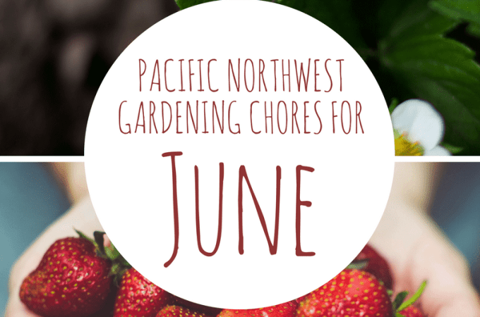 June Gardening Chores For The Pacific Northwest