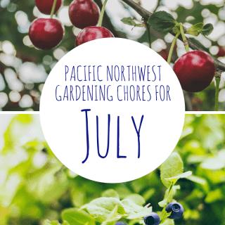 7 July Garden Chores