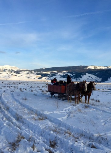 Moran - Wyoming, December 31, 2015 - 19 of 30