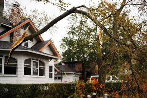 GALLERY: Hurricane Damage Outside New York City