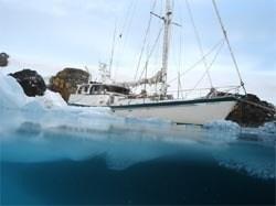yacht australis antarctica