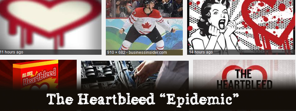 "Heartbleed ""Hit-List"""