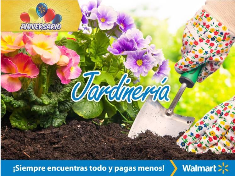 Como mantener lindo tu jardin casero