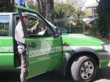 La Guardia Forestale scopre 24 auto abbandonate in un piazzale a Rivalta Scrivia