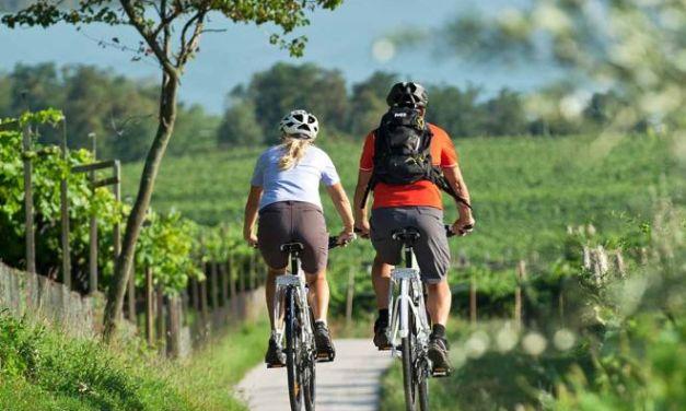 In bicicletta fra i vigneti dell'oltrepo' pavese
