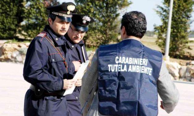 Azienda del tortonese trasportava rifiuti speciali senza autorizzazione.