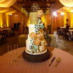 cherylmcmillancakedesign castletonfarms specialnotestn missccclayton !!! knoxvillewedding knoxvilledj weddingcakes