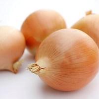 Česen in čebula - več kot le zelenjava