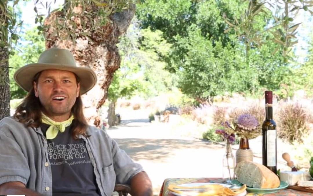Dans la série «Aux Etats Unis et Nulle part ailleurs»… Comment fait on l'huile d'olive ?