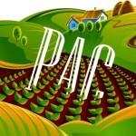 Pac_Ayudas_Aceite Ecologico_Olivar de sierra Los Pedroches_Olivarera_Olipe_Olivalle