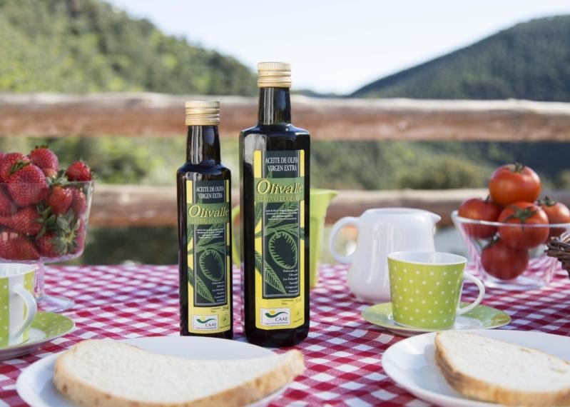 Desayuno mediterraneo salud Aceite Ecologico Olivar de sierra Los Pedroches Olipe Olivalle Olivarera