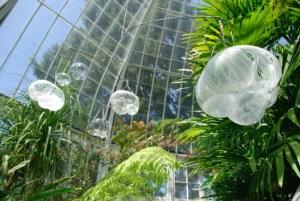 SkyPond Glass Installation