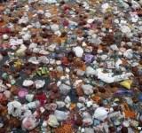 rios poluidos na india (1)