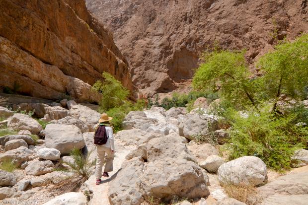 wadi-shab-7