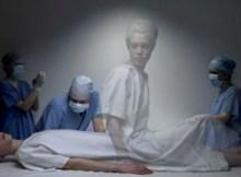 brain-after-death