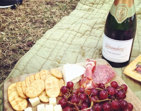 FAMILY DATE:  PICNICS IN THE PARK