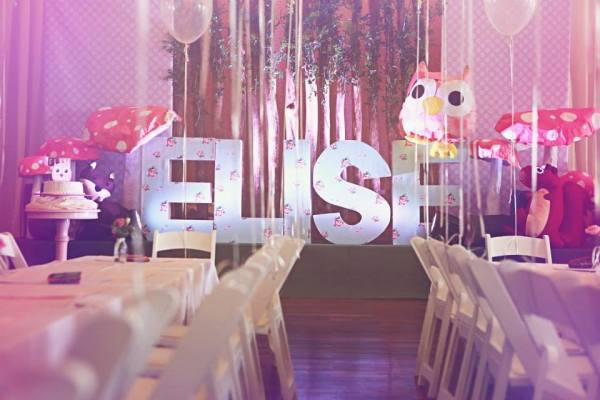 Owl Themed Party - 18