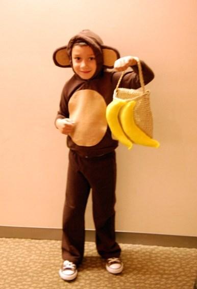 monkey from makezine