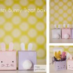 Bunny Gift Box