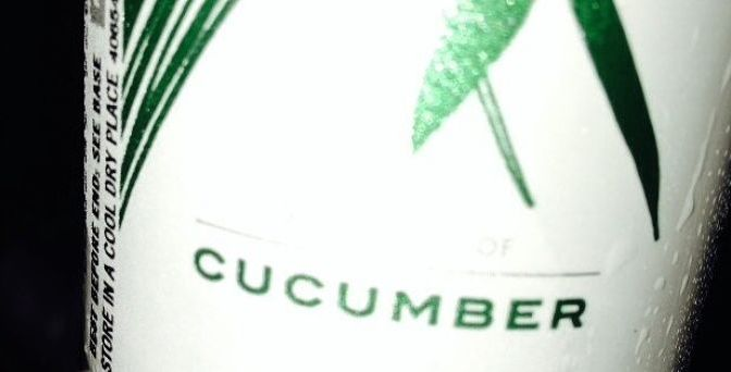 Cucumber gin and tonic review