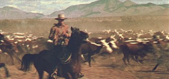 """Feature film casting """"expert horseback riders"""""""
