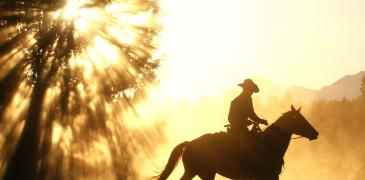 casting-cowboy-in-new-mexico