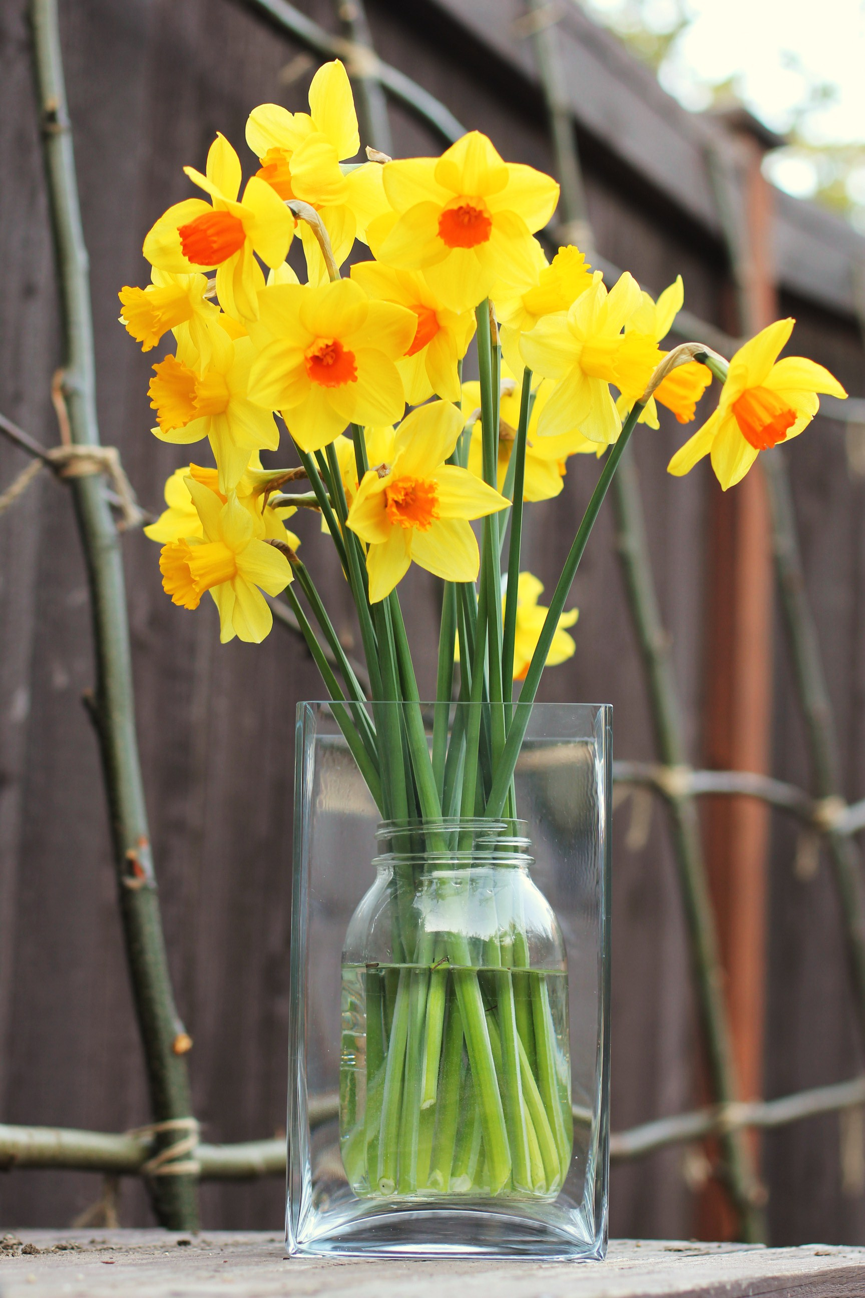 How to make an easter spring centerpiece using fresh flowers