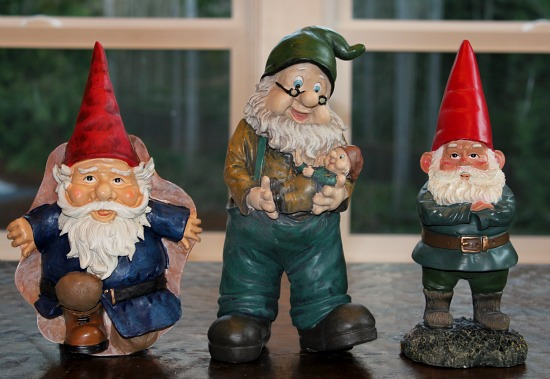 gnomes one hundred dollars a month