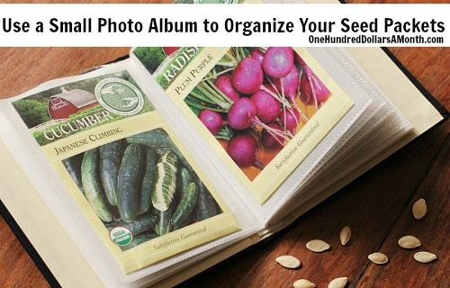 How-to-Organize-Seed-Packets-photo-album_opt