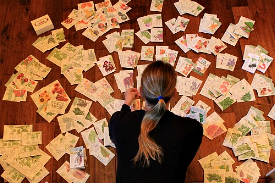 botanical-interests-seeds-seed-packets