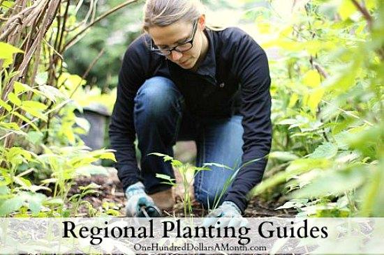 regional-planting-guides