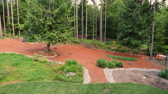 wooded backyard red mulch