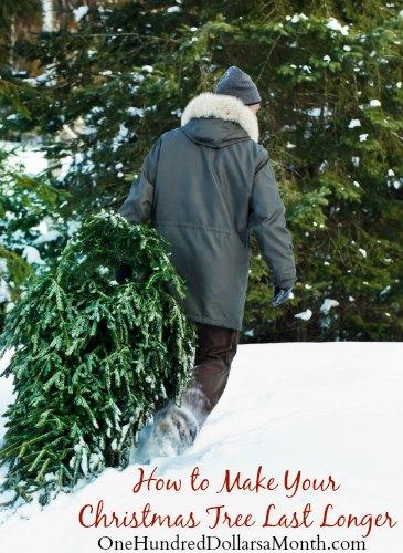 Christmas Tree Make Last Longer : How to make your christmas tree last longer