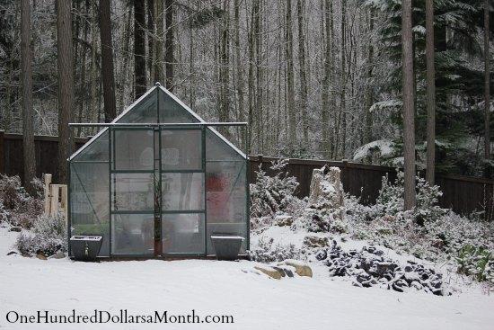magnum glass greenhouse winter snow