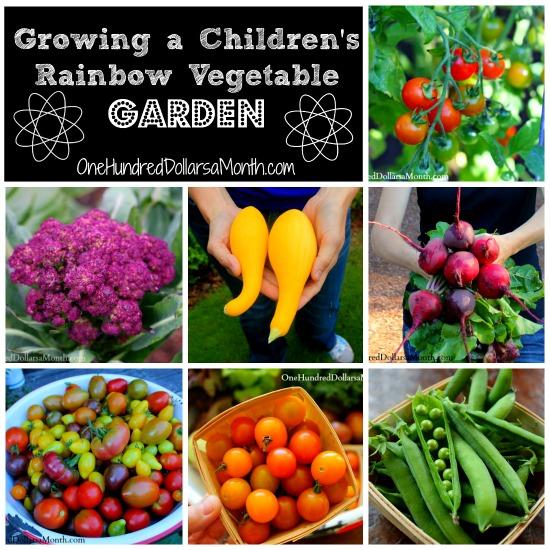 Growing a Rainbow Vegetable Garden